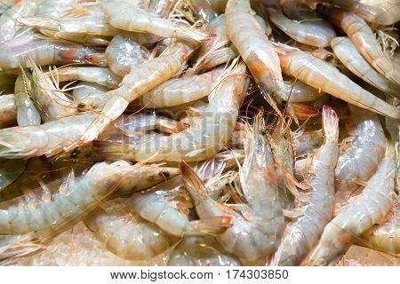 Pile Of Fresh Uncooked Prawns
