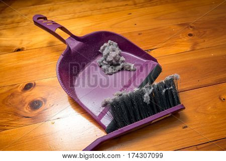 Dustpan and brush set with ball of dust on floor in room inside house