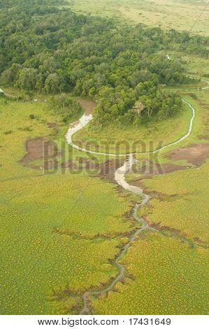 Masai Mara Wetlands
