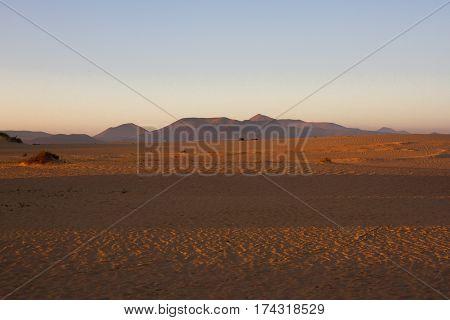 Slope hill sand on yellow dunes on sky background. Sunrise, morning. Sustainable ecosystem. Canary island, Fuerteventura