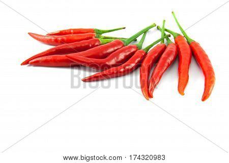 The red chilli on the white background