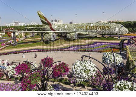 DUBAI UAE - NOV 27 2016: Emirates Airbus A380 made of Flowers at the Miracle Garden in Dubai. United Arab Emirates Middle East