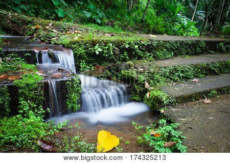 A small waterfall by the stone stairs covered with moss in the tropical jungle