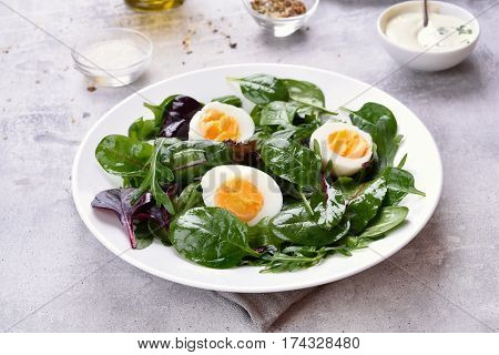 Fresh green salad with spinach arugula romaine lettuce and mesclun. Dish for healthy breakfast