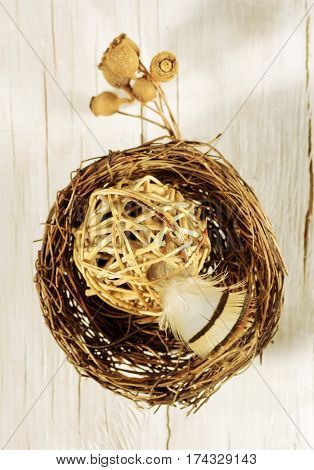 spring and Easter decorative composition with feather, nest and ball of twigs in warm brown tones. twig with fruits