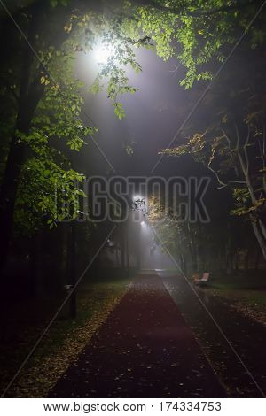 Heavy fog descended on the alley in the Park with lanterns in the late evening