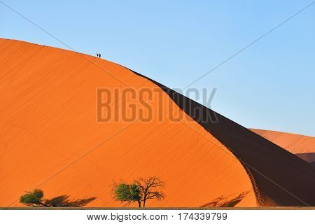 Most known dune in the world dune 45 in Sossusvlei Namib Naukluft National Park at sunrise Namibia.