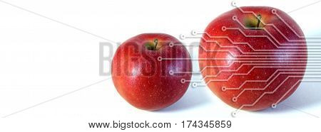 Image of two apples under electronic circuits