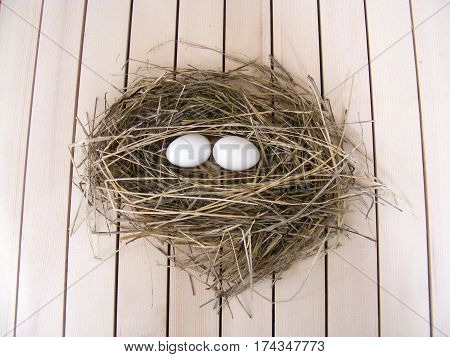 Chicken nest and chicken eggs decorative concept,Chicken eggs in natural view, presentation with beautiful concept, egg lover,