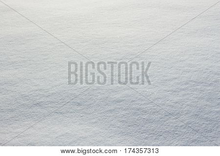 Fresh Snow Texture On Winter Ground