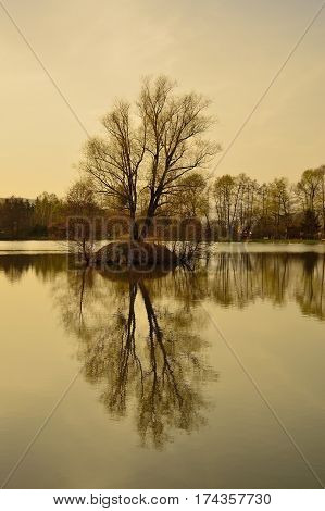 Beautiful autumn lake and trees. Tree reflection on water level. Fall in Slovakia. Wild natural pond and island.