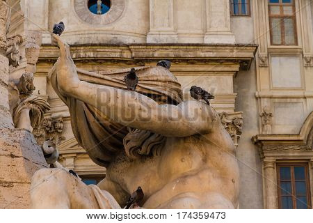 Statue The Fontana Dei Quattro Fiumi With Pigeons