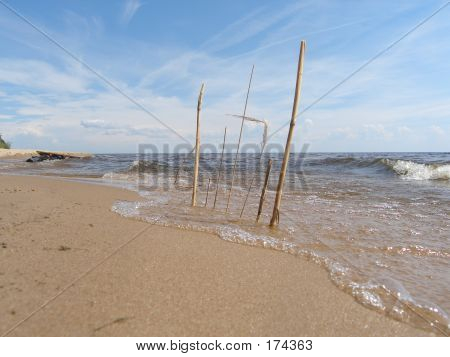 Sticks in the sand at the beach poster