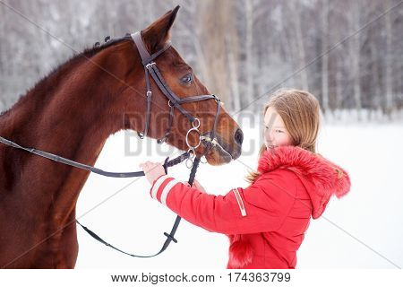 Young teenage girl spending time with her friend bay horse in winter park. Frendship concept image