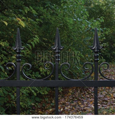Forged black decorative wrought iron fence closeup autumnal trees background fallen leaves horizontal large detailed dark autumn park scene