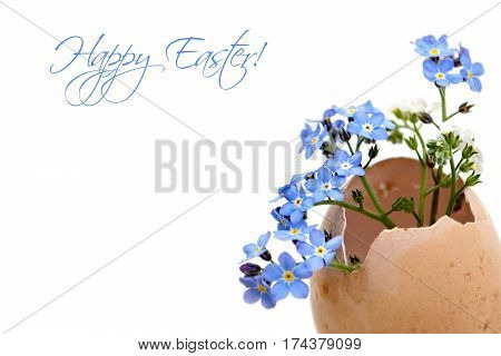 Happy Easter card with spring flowers in eggshell isolated on white background