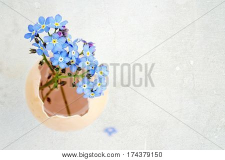 Easter card with spring flowers in eggshell on grunge background