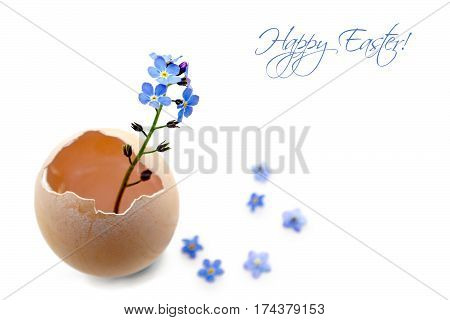 Easter card with spring flowers in eggshell