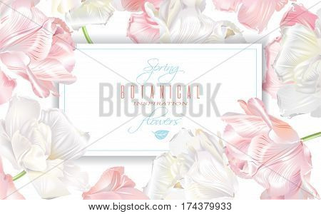 Vector horizontal banner with white and pink tulip flowers. Spring tender design for natural cosmetics, perfume, florist shop. Can be used as greeting or wedding invitation