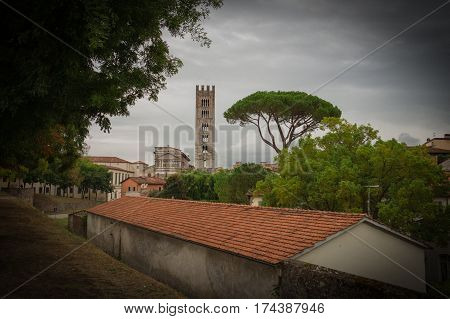Italy Lucca - September 18 2016: the view of typical red roofes with stone pine and San Frediano church belfry on background on September 18 2016 in Lucca Tuscany Italy. Vignette effect