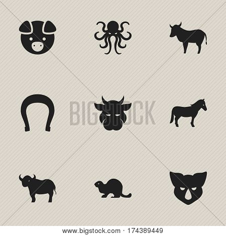 Set Of 9 Editable Zoology Icons. Includes Symbols Such As Tentacle, Stallion, Talisman And More. Can Be Used For Web, Mobile, UI And Infographic Design.