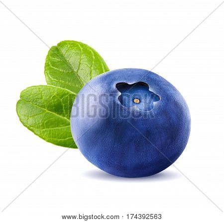 Fresh blueberries with leaves. Berry isolated isolated on white background by clipping path. Macro.