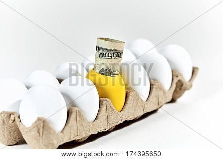 Golden Egg With Paper Currency