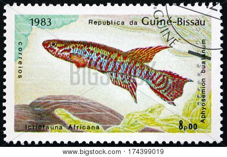 GUINEA-BISSAU - CIRCA 1983: a stamp printed in Guinea-Bissau shows Aphyosemion bualanum is a species of African rivulines endemic to Africa circa 1983