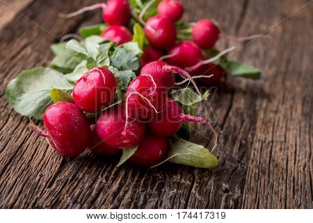 Radish. Fresh Radish. Red fresh radish. Fresh Vegetable on old oak table.