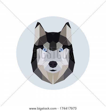 Husky head polygonal style. Trendy Vector illustration.