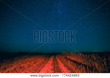 Blue Night Starry Sky Above Country Road In Countryside And Green Field. Night View Of Natural Glowing Stars. Red Ground In Red Light