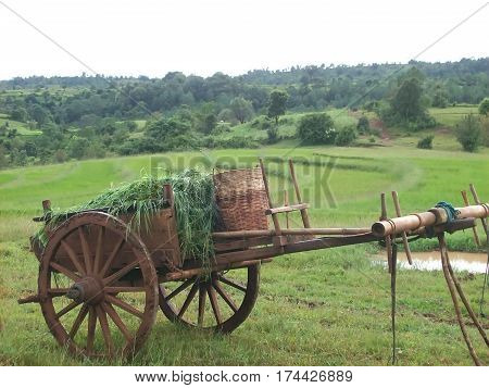 A cart in a field in asia
