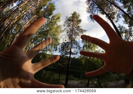 human hand in front of the camera. fisheye lens