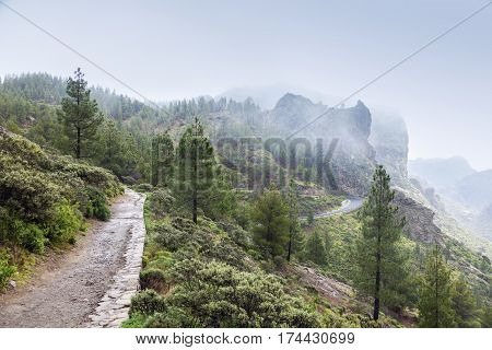 Trail to Roque Nublo in fog. Gran Canaria Canary Islands Spain.