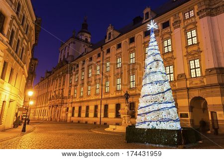 Christmas tree by University of Wrocław at night. Wroclaw Lower Silesian Poland.