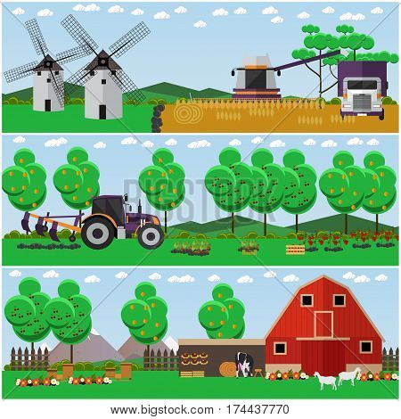 Vector set of farm interior concept posters, banners. Apiary, farmyard, garden, field, mills and agricultural machinery, flat style design elements.