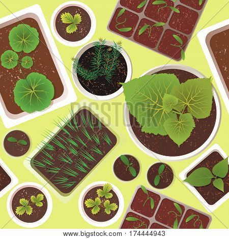 Seamless vector pattern of seedlings of various garden plants in the spring.