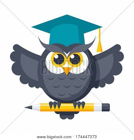 Wisdom concept with owl in graduation cap