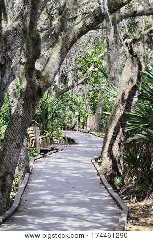 Boardwalk at Merritt Island National Wildlife Refuge Visitor Center