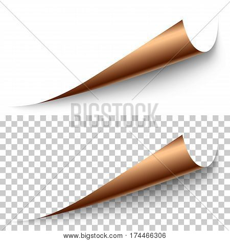 Vector realistic bronze foil corner with shadow on transparent background. 3D page corner curled. Blank sheet of paper. Design element.