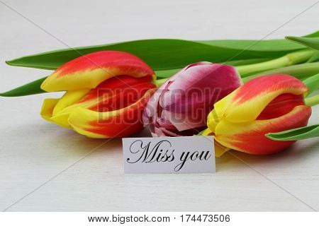Miss you card with three colorful tulips