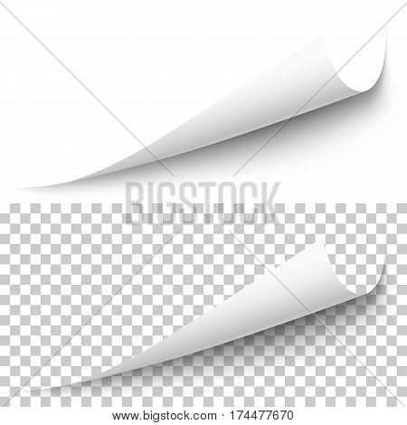 Vector realistic white paper corner with shadow on transparent background. 3D page corner curled. Blank sheet of paper. Design element.