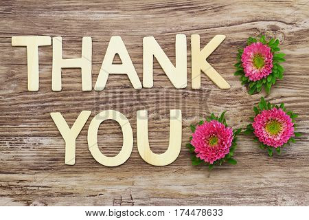 Thank you written with wooden letters and pink daisy flowers