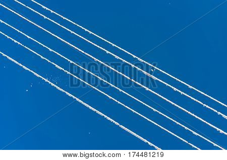 Snow On Frost Electric Wires