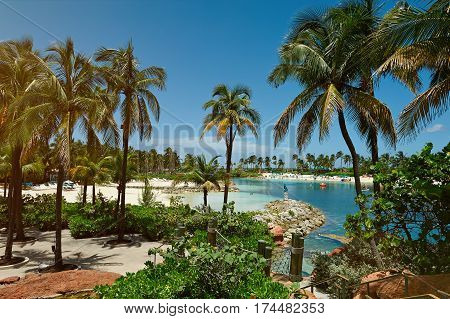 Tropical resort bay with palms in clear blue sky day. Vacation on bahamas nassau atlantis hotel