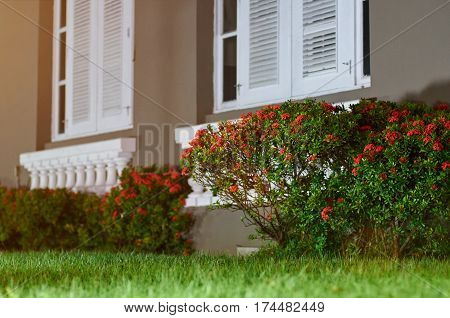Yard with flowers infront of house. Grass lawn garden with white home windows