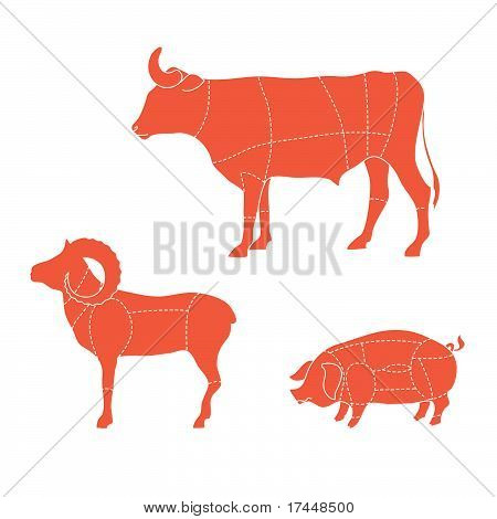 Template - how to cut meat cows ram pigs poster