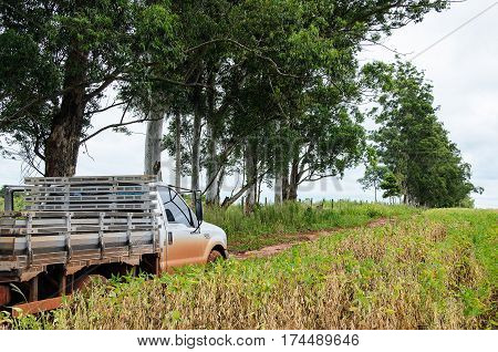 MATO GROSSO DO SUL BRAZIL - FEBRUARY 01 2017: Ford F-350 truck on a farm dirt road passing next to a soybean plantation.