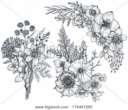 Set of Floral compositions. Bouquets with hand drawn flowers and plants. Monochrome vector illustrations in sketch style.