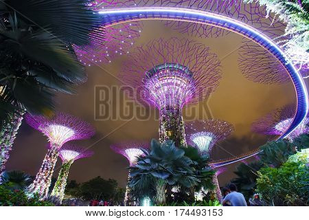 MARINA BAY SINGAPORE - JAN 22 2017: Landscape of the Gardens by the Bay Super tree grove light show in Singapore.